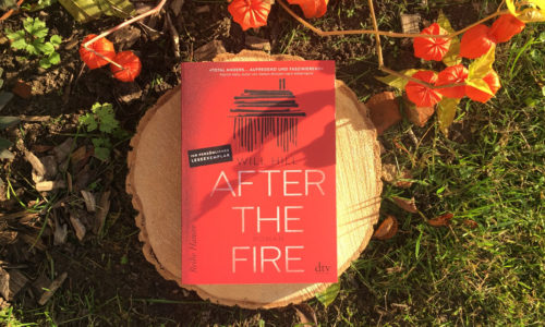 Buchcover von After the Fire